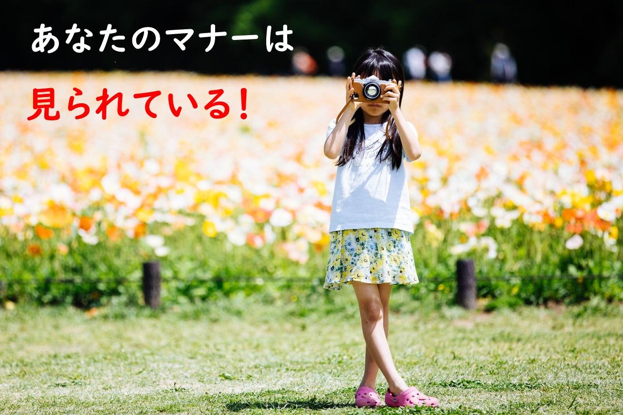 少女とカメラ