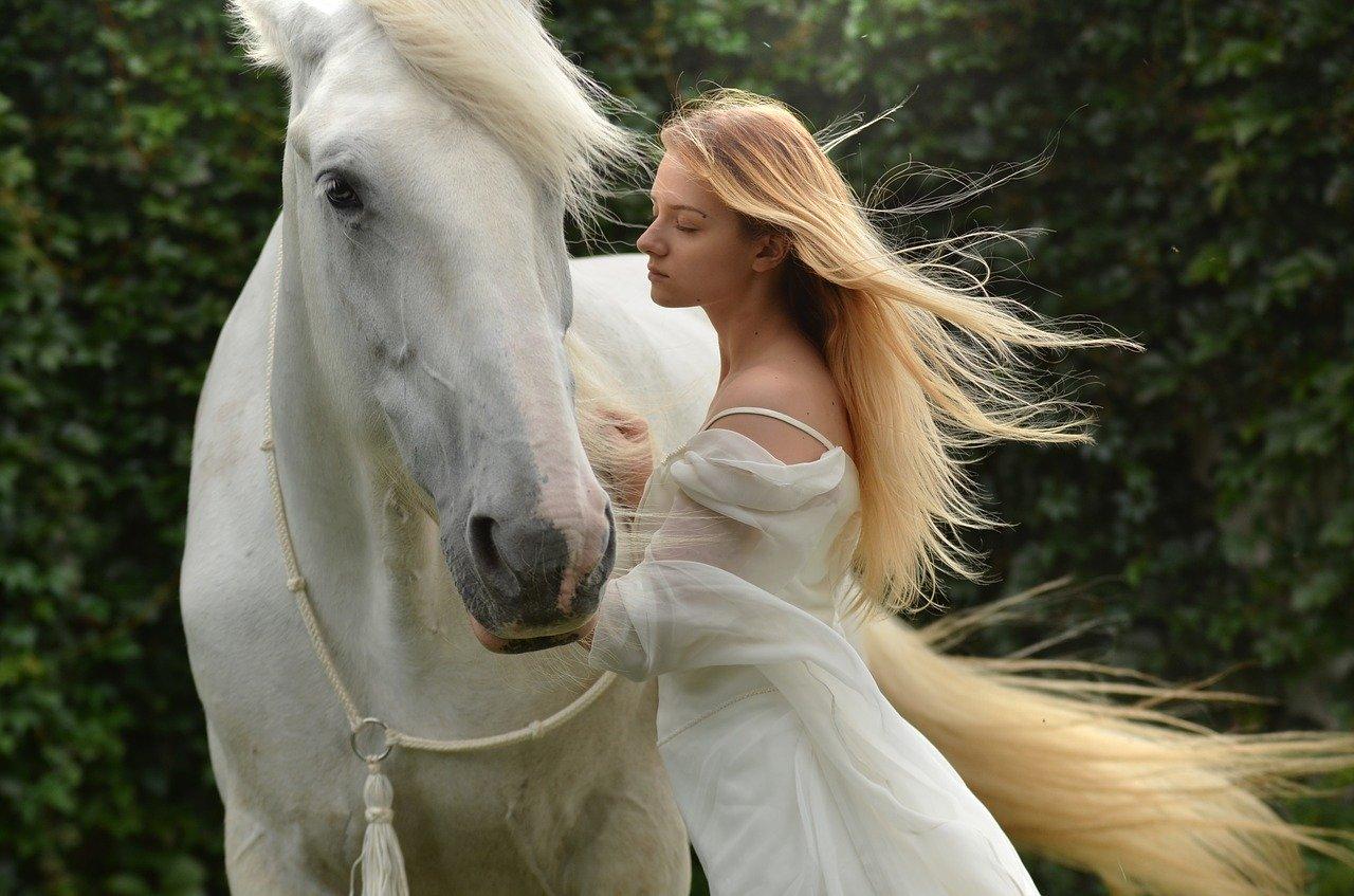 白馬と少女